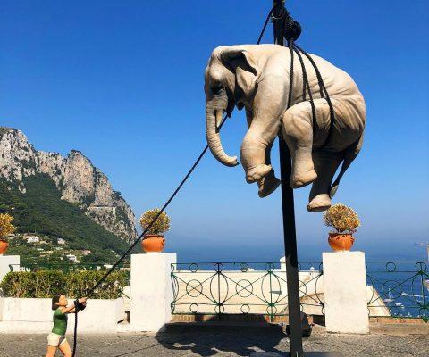 Marta e l'elefante, la nuova mega installazione in Piazzetta